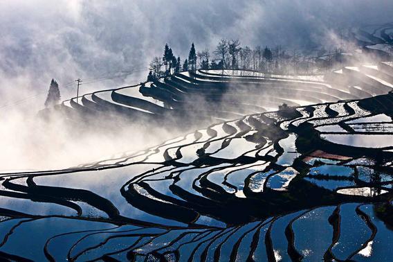 Wonderful Sunrise and Fantastic Cloud Sea in Duoyishu Rice Terraces
