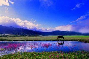Lashihai Lake in Lijiang