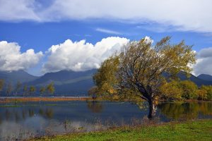 Lashihai Lake in Lijiang