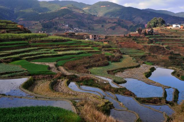 Nanuo Rice Terraces in Yuanjiang County, Yuxi