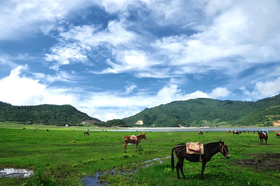 Wenhai Lake ,Lijiang