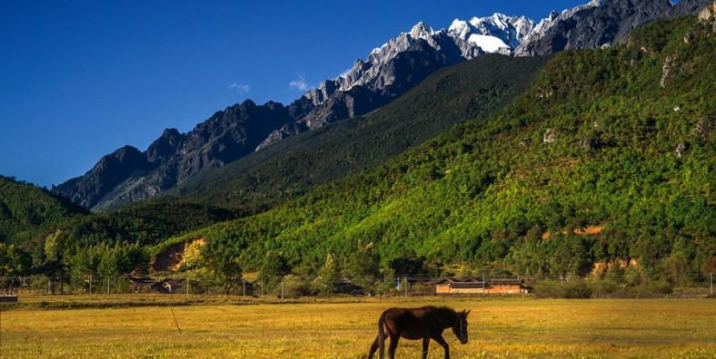 1 Day Lijiang Eco-Tour with Baisha Old Town, Fuguo Monastery, Wenhai Lake and Xuehua Village
