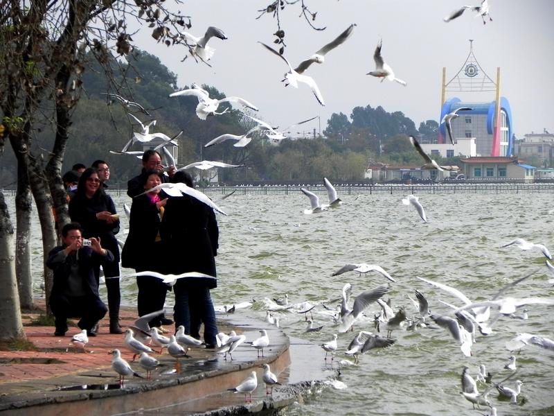 Haigeng Park, Kunming