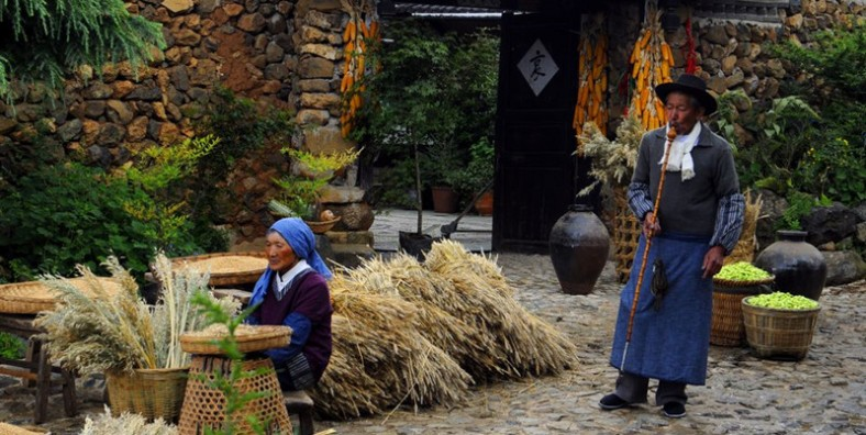 3 Days Lijiang Hiking Tour from Yuhu Village to Wenhai Lake and Yangyuchang Village