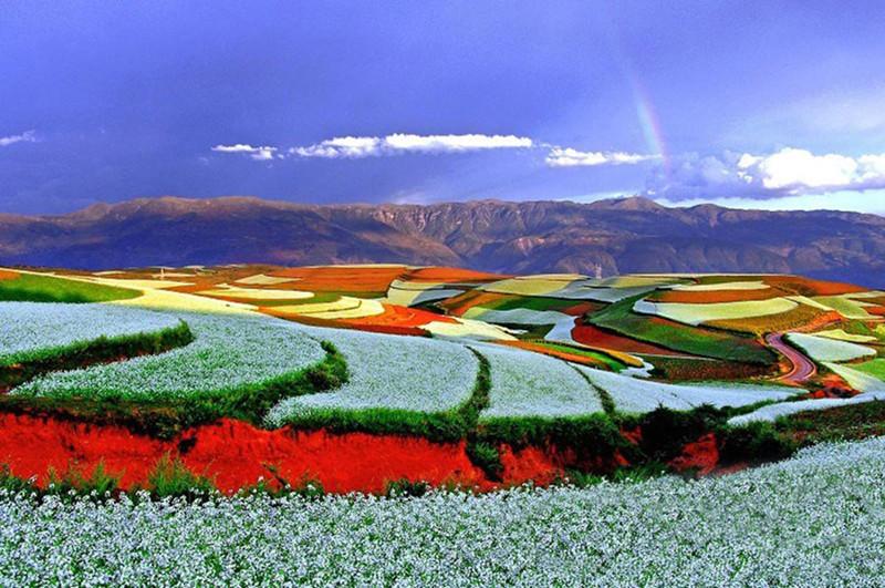 Luosiwan of Dongchuan Red Land, Kunming