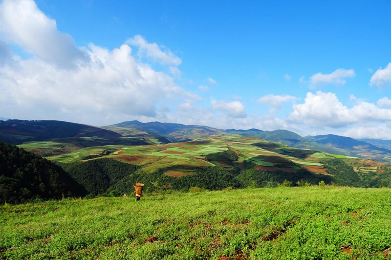 Wafang Liangzi Village of Dongchuan Red Land in Kunming