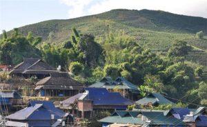 Zhangjia Sandui Tea Plantation in Menghai County, XishuangBanna
