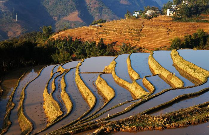 Dongzhu Rice Terraces in Luchun County, Honghe