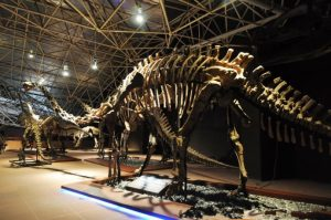 Lufeng Dinosaur Museum, Chuxiong