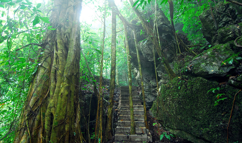 Mengyuan Fairyland Cave in Mengla County, Xishuangbanna