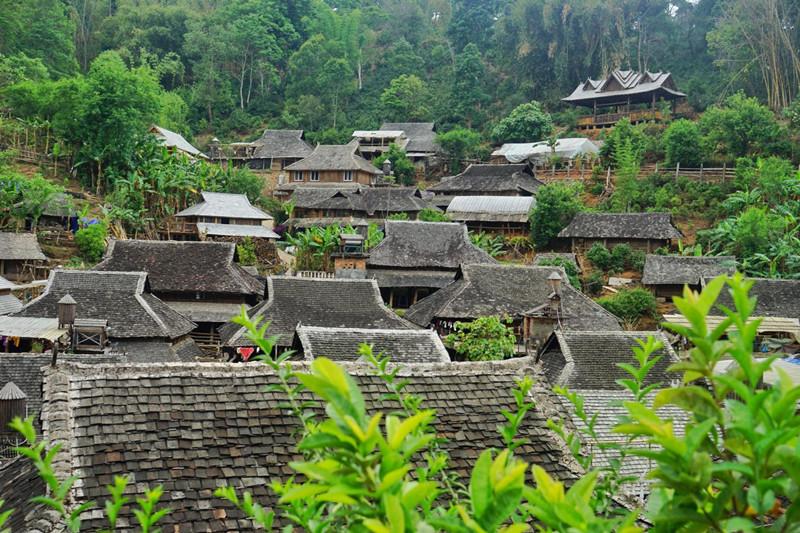 Jingmai Tea Mountain in Lancang County, Puer