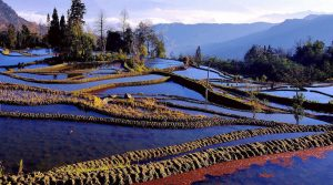 Ailao Rice Terraces in Yuanjiang County, Yuxi