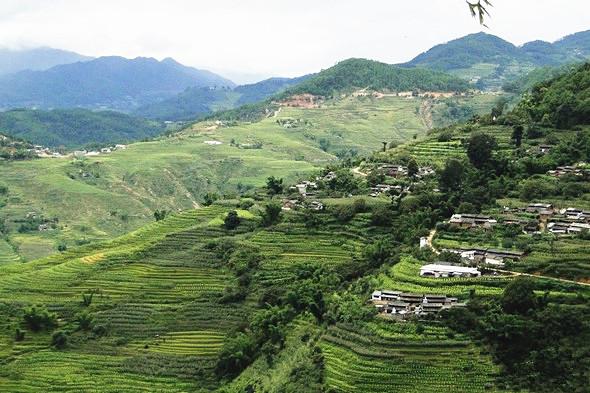 Ailaoshan Mountain in Jingdong County, Puer