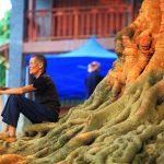 2 Days Bamei Xanadu Village Tour from Kunming by Speedtrain