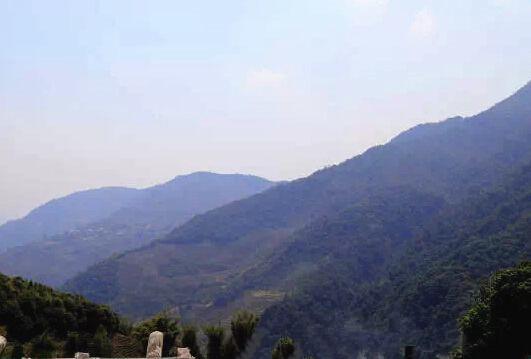 Jiashan Village of Xibanshan Tea Mountain in Mengku Town, Lincang
