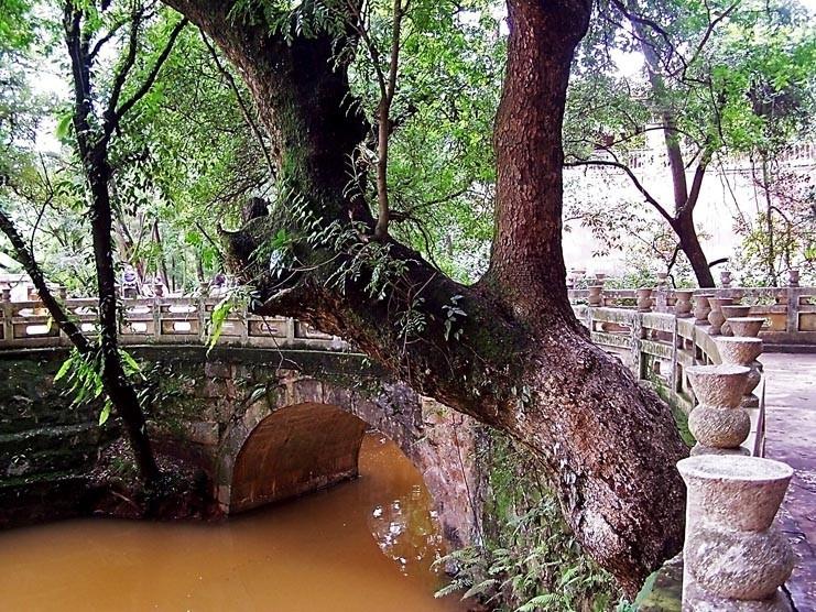 Jiulongchi Park in Hongta District, Yuxi