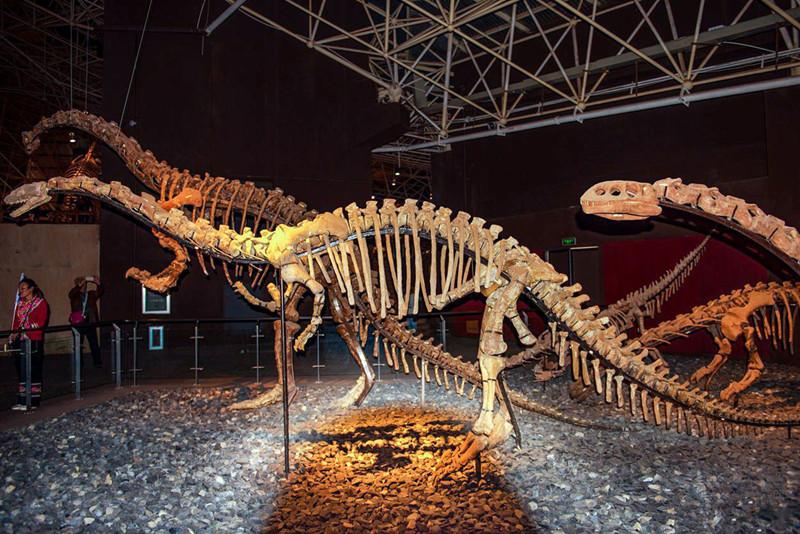 Lufeng World Dinosaur Museum, Chuxiong