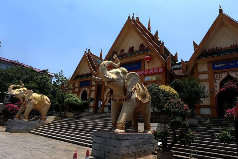 Mengba Naxi Rare Park in Mangshi City, Dehong