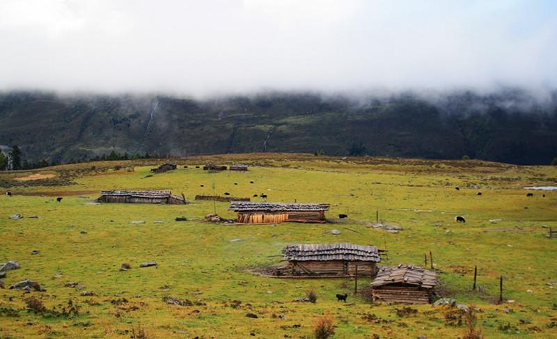 Nanbao Pasture in Niru Village, Shangrila