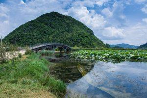 Swan lake in Puzhehei, Wenshan