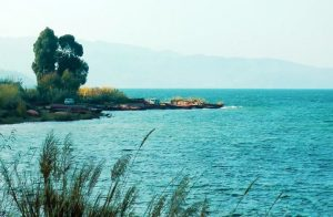 The Cherry Valley of Fuxian Lake, Yuxi