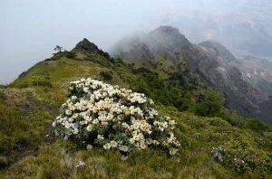 Yaoshan Mountain in Qiaojia County, Zhaotong