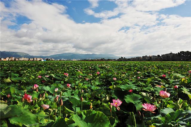Chengjiang County