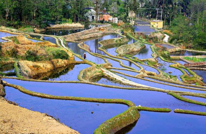 Shengcun Hani Rice Terraces in Yuanyang County, Honghe