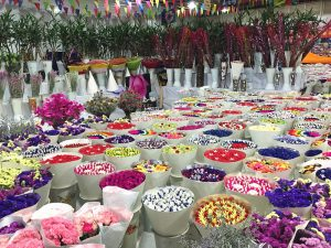 Bailong Flowers and Birds Market in Kunming