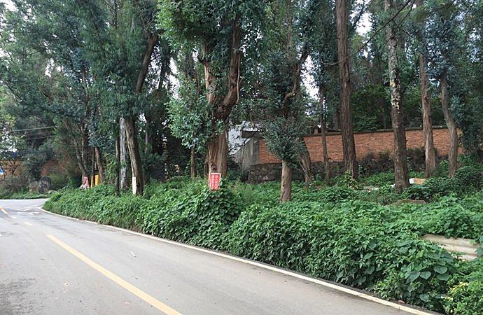 Fenghuangshan Popular Science Ecological Park in Kunming