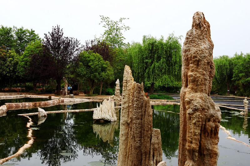 Fengzeyuan Botanical Garden in Songming County, Kunming-05