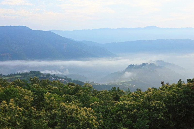 Huanglianshan Mountain Nature Reserve in Luchun County, Honghe