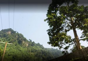 Huayudong National Forest Park in Hekou County, Honghe