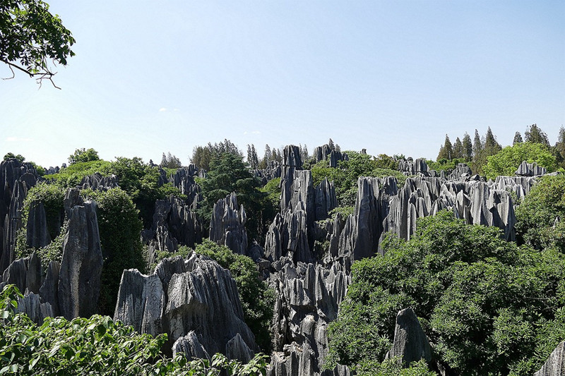 The Stone Forest, Kunming