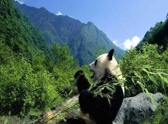 Meishucun Nature Reserve in Jinning District, Kunming-03