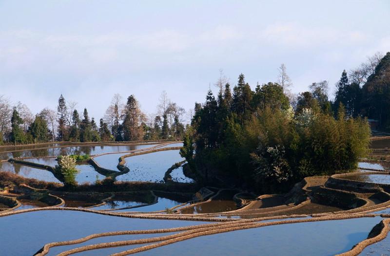 Shangmadian Rice Terraces in Yuanyang County, Honghe