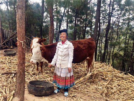 Tuanjie Town of Luquan County in Kunming