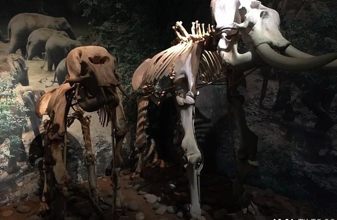 XishuangBanna Nationalities Museum