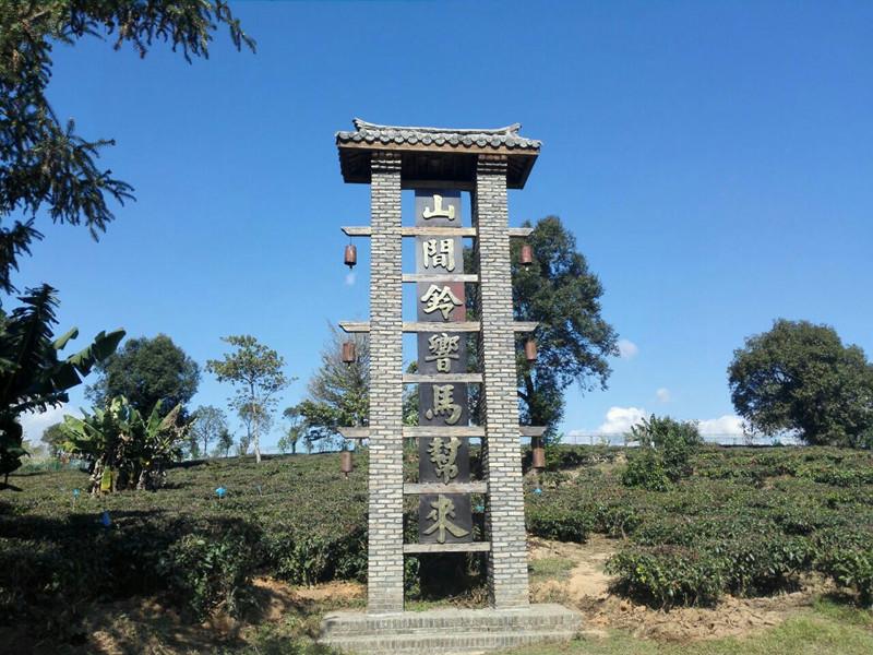 Yunchayuan Tea Plantation Scenic Area in Menghai County, XishuangBanna
