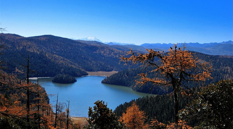 Bitahai Lake in Shangrila, Diqing