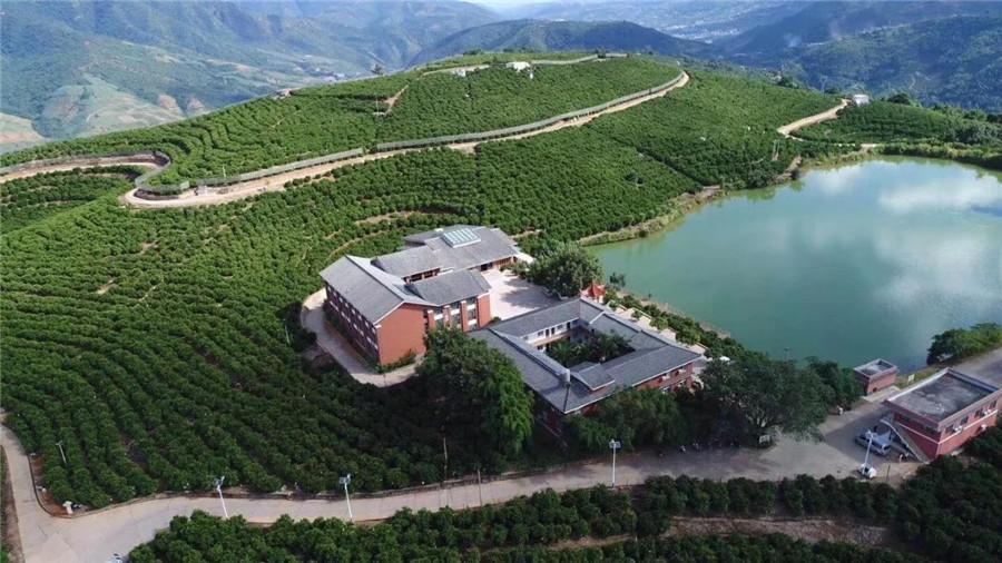 Chu Orange Manor in Xinping County, Yuxi