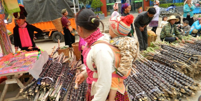 11 Days Yunnan Ethnic Minority's Markets Discovery and Long Street Banquet Celebration Tour