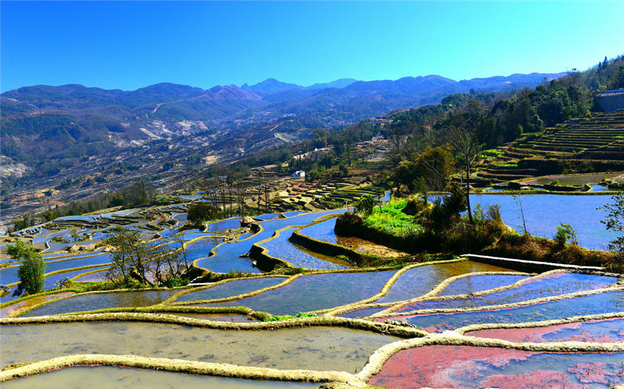 Qingkou Hani Rice Terraces in Yuanyang County, Honghe