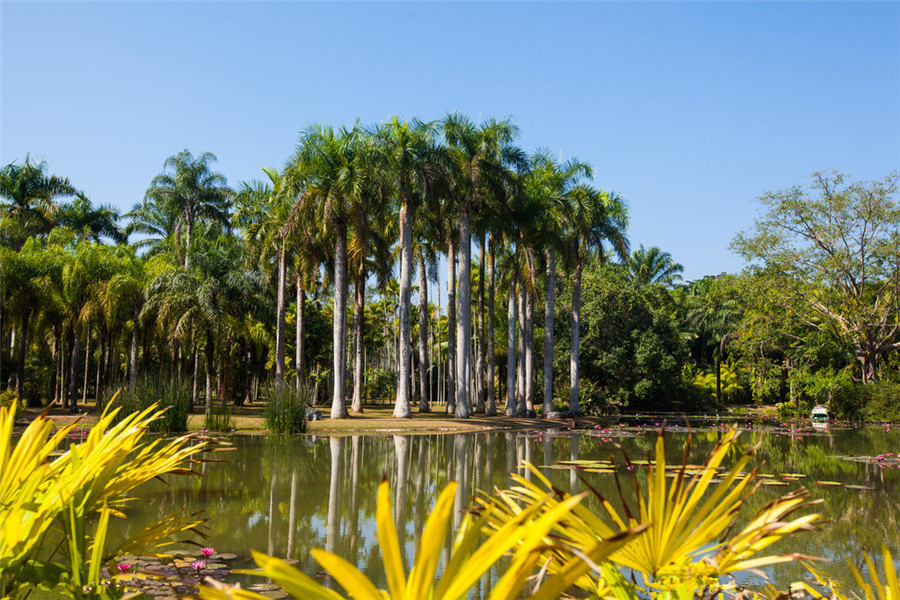 Xishuangbanna Tropical Botanical Garden