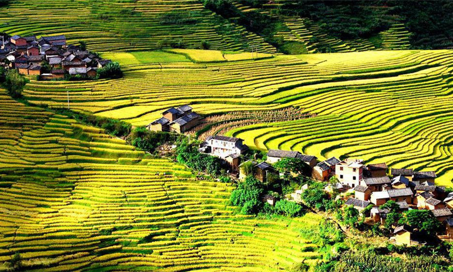 Ejia Rice Terraces in Shuangbai County, Chuxiong