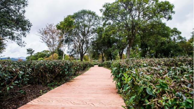 Harmonious Garden of China Puer Tea Exhibition Garden in Puer City