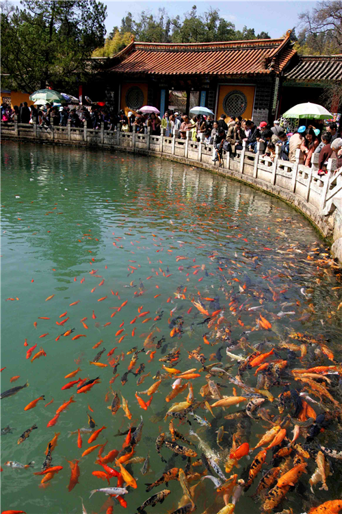 Temple Fair in Kunming Heilongtan Park