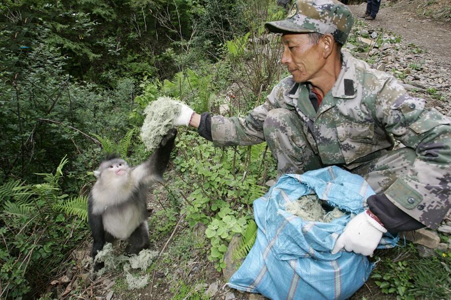 Tibu, a ranger of the Baima Snow Mountain National Nature Reserve