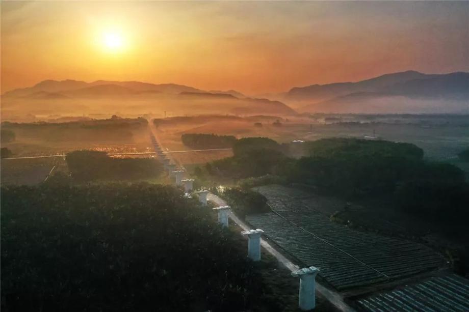 Construction of Yuxi-Mohan railway in full swing