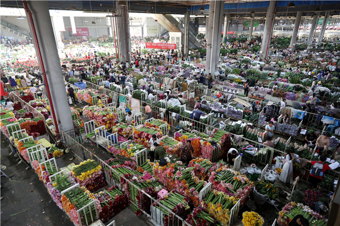 Flower Market in Kunming of Yunnan